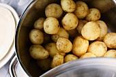 A pot of new potatoes