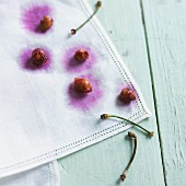 Cherry stones and stems on a white cloth