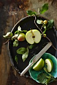 A sliced Granny Smith apple and a sprig from an ornamental apple tree in a bowl
