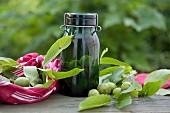 A jar of green walnuts