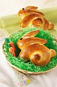 Bred rabbits in an Easter nest