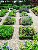 Various beds on herbs in a garden separated by gravel paths