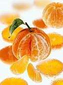 Clementinen mit Wassertropfen