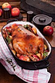 Roast goose with apples and marjoram in a roasting dish