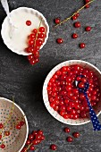 Bowls of redcurrants and yogurt