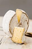 Ein Laib Schweizer Mutschli Käse, angeschnitten