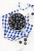 An enamel bowl of blueberries on a blue and white-checked apron