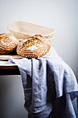 Bread and baking dishes on a purple cloth