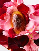Foie Gras on rose petals
