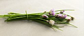 A bunch of chives with flowers