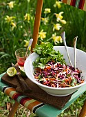 Vegetable salad with red cabbage and root vegetables on a garden chair