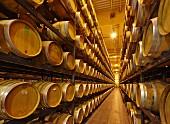 Vin Jaune Alterungskeller von La Maison du Vigneron, Frankreich