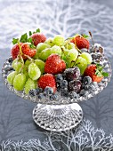 Frozen, sugared fruit