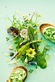 Spring salad with avocado and cucumber crostini
