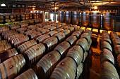 Klimatisierter Fasskeller vom Weingut Nederburg (Paarl, Western Cape, Südafrika)