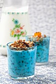 Crunchy muesli with yogurt in light blue glasses