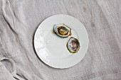 Weisser Porzellanteller mit zwei Austernschalen, Perle in Auster