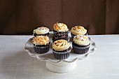 Chocolate cupcakes with various types of buttercream