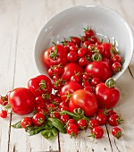 Tomatoes falling out of an overturned bowl