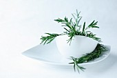 A sprig of rosemary in a white bowl on a white plate