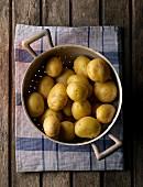 Kartoffeln im Fussseiher