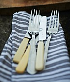 Picnic cutlery on a striped fabric napkin