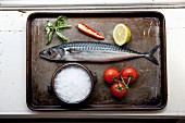 Mackerel with tomatoes, salt, chilli peppers, basil and lemon on a baking tray