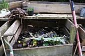 Compost in a garden