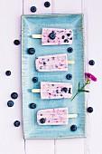 Blueberry and yogurt ice cream sticks