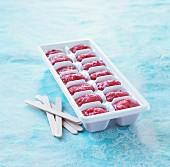 Selbstgemachtes Eis am Stiel im Behälter