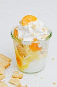 Frozen yogurt with mandarins and biscuits