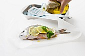 Olive oil being drizzled over seabream with lemon and basil