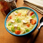 Chicken soup with egg noodles, celery and carrots