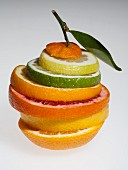 Various slices of citrus fruits (lemon, lime, orange, pink grapefruit, grapefruit)