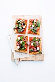 Salad pizzas with mozzarella, salami, tomatoes and olives