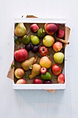 Apples, pears, plums and cinnamon sticks in a crate