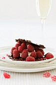 A raspberry dessert with chocolate and almond biscuits and vanilla cream