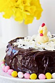 A cheerful Easter cake decorated with dark and white chocolate