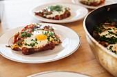 Shakshouka (Nordafrikanisches Pfannengericht mit Eiern)