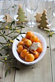 Kumquats and mistletoe