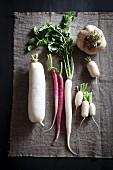 An arrangement of turnips