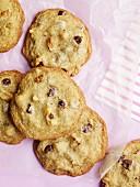 Mehrere Chocolatechip Cookies (Draufsicht)