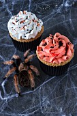 Two Halloween cupcakes with a spider and a spider web