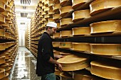 A dairy man checking wheels of cheese