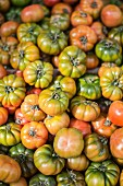 Lots of heirloom tomatoes