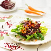 Cos lettuce with radicchio, sunflower seeds and grated carrot