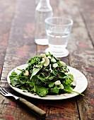 Feldsalat mit Wildreis, Lauchzwiebeln und Cashewkernen