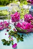 Wildrosen in Körben & Gläsern auf Tisch im Freien