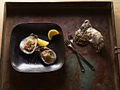 Raw oysters on a plate with lemons