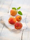 Apricots on a cloth